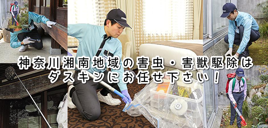 藤沢・茅ヶ崎・平塚市の害虫駆除サービス
