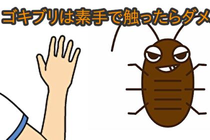 ゴキブリのフンを触ったら