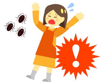 ゴキブリ対策は手遅れになる前に!