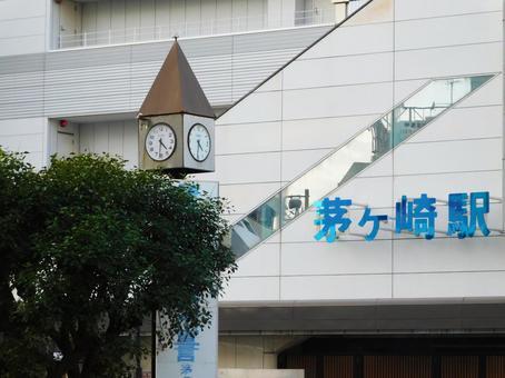茅ヶ崎駅周辺のねずみ駆除