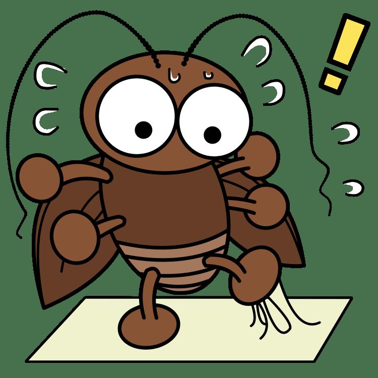 ダンボールの保管場所がない場合のゴキブリ対策