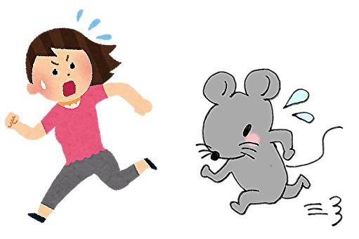 ネズミが人に及ぼす被害