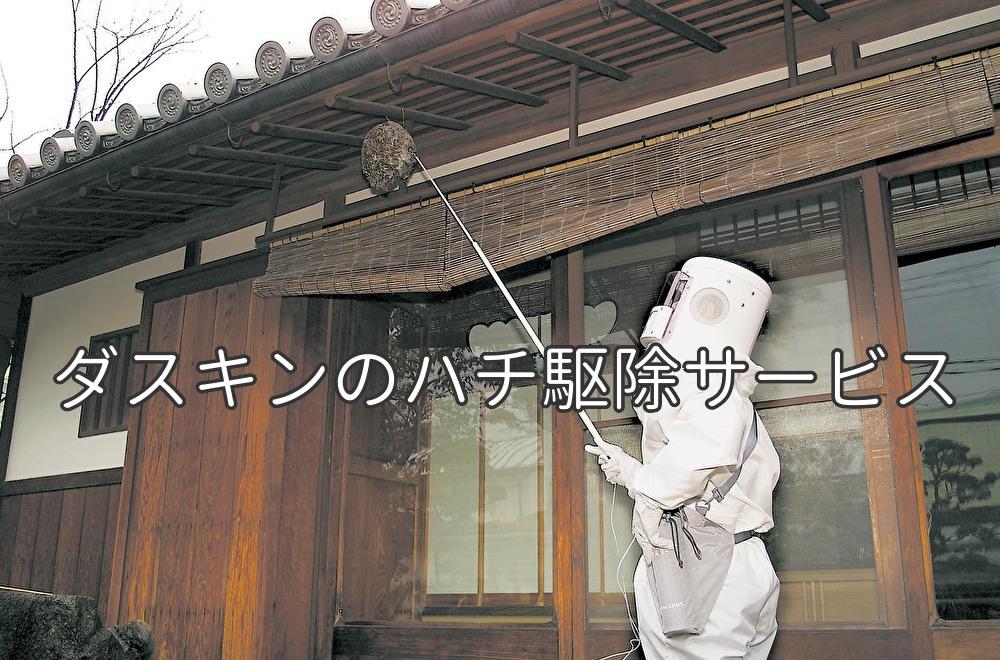 藤沢市・茅ヶ崎市・平塚市のハチの駆除はダスキンへ