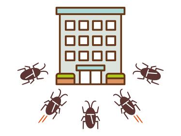 ゴキブリが増える原因