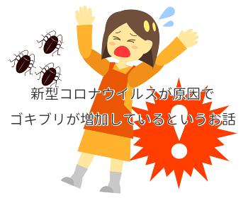 新型コロナウイルスが原因でゴキブリが増加しているというお話