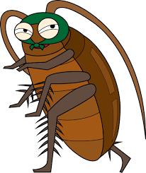 ゴキブリが冷蔵庫裏に潜んでいる理由