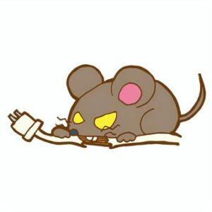 ネズミ被害を見つけたら即連絡を
